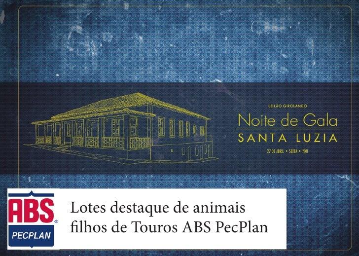 Lotes destaque de animaisfilhos de Touros ABS PecPlan