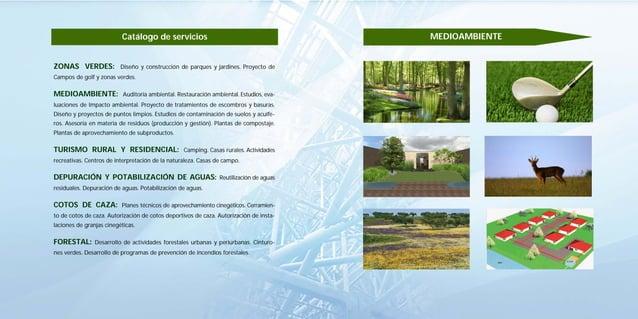 12                                                       13                          Catálogo de servicios                ...