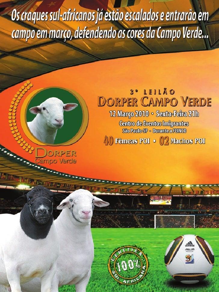 3º Leilão DORPER CAMPO VERDE acontece dia 12 de março durante a Feinco