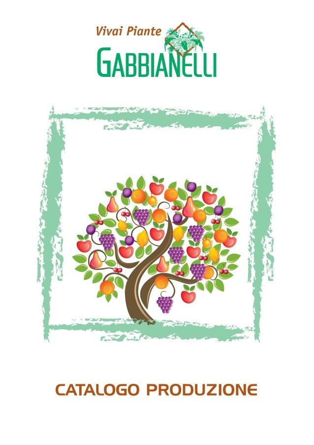 Catalogo produzioni da frutto vivai piante gabbianelli for Vivai piante da frutto