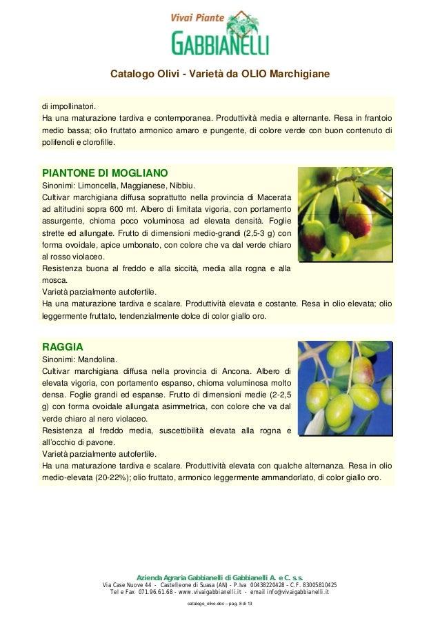 Catalogo produzioni da frutto vivai piante gabbianelli for Piante da frutto che resistono al freddo