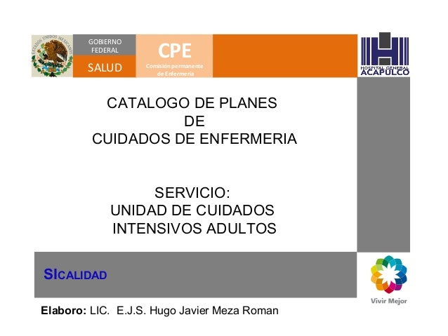 GOBIERNO FEDERAL  SALUD  CPE  Comisión permanente de Enfermería  CATALOGO DE PLANES DE CUIDADOS DE ENFERMERIA SERVICIO: UN...