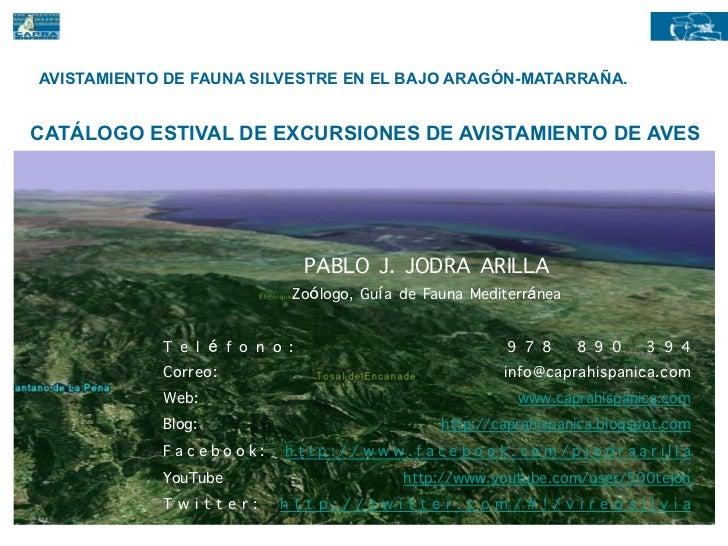 AVISTAMIENTO DE FAUNA SILVESTRE EN EL BAJO ARAGÓN-MATARRAÑA.CATÁLOGO ESTIVAL DE EXCURSIONES DE AVISTAMIENTO DE AVES       ...