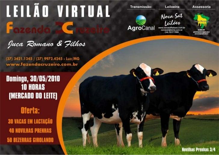 Catálogo do 6º Leilão Virtual da Fazenda Cruzeiro acontece dia 30 de maio