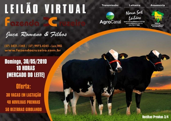 LOTE   LOTE 18     03     LOTE   LOTE 18     21