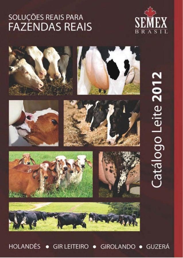 É com muita satisfação que apresentamos nosso novo catálogo de touros, com as provas de abril 2012. Consolidando a posição...
