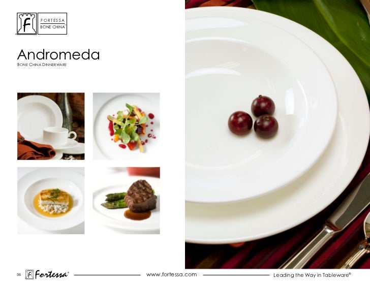 ForTessa                    Tm         Bone chinaandromedaBone china dinnerWare36       Fortessa          ®               ...