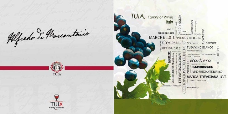 Tuia was founded by the Di      Our mission is to export to the world the most amazing Italian wines that until           ...