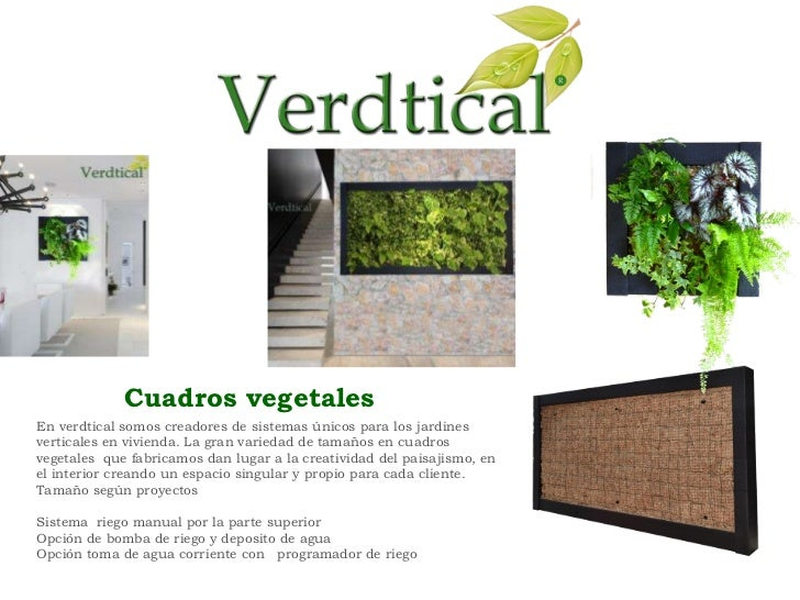 Catalogo verdtical for Cuadros vegetales verticales