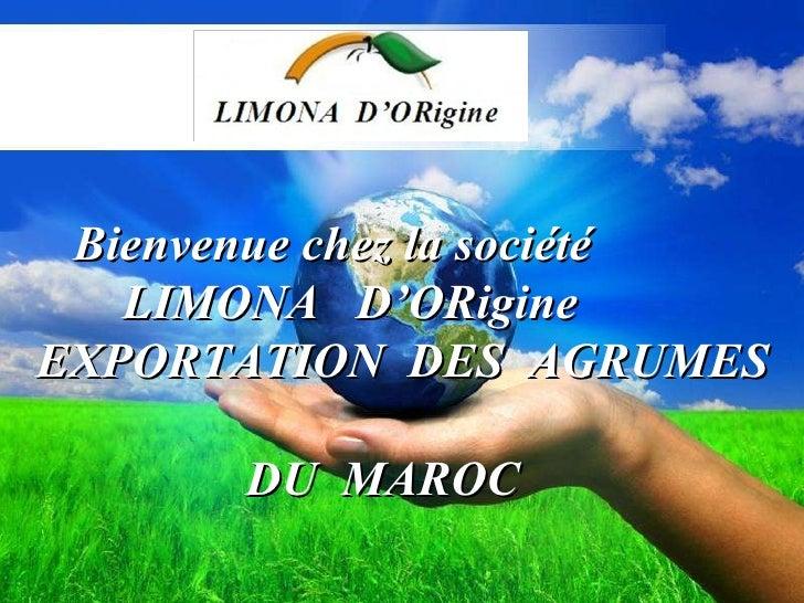 LIMONA D'OR ADRESS: 14  RUE TUNIS HAY RABHA  OULED TEIMA AGADIR   MAROC Bienvenue chez la société   LIMONA  D'ORigine EXP...