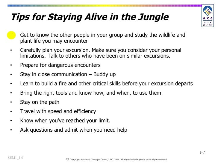 Tips for Staying Alive in the Jungle <ul><li>Get to know the other people in your group and study the wildlife and plant l...