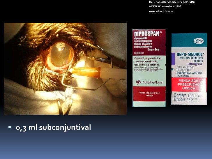 Tomografia óptica helicoidal<br />Dr. João Alfredo Kleiner MV, MSc<br />ACVO Wisconsin – 1998<br />www.vetweb.com.br<br />
