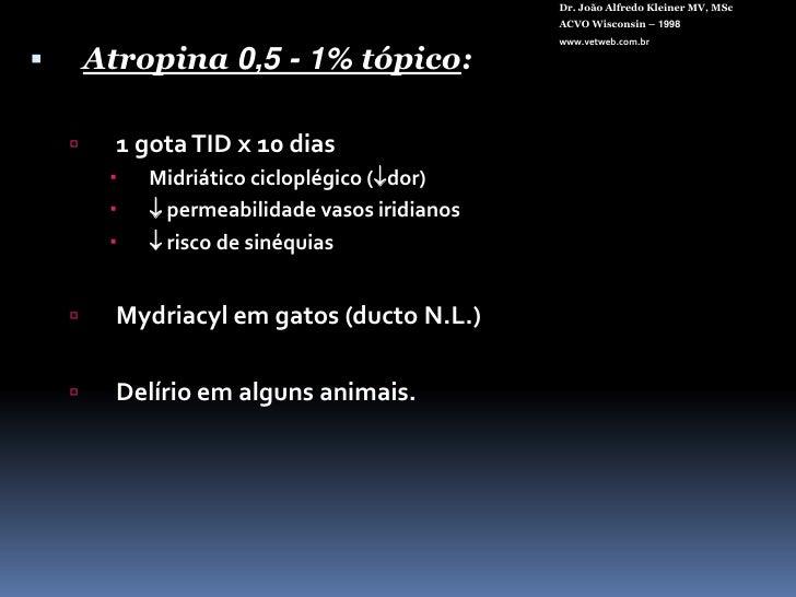"Dr. João Alfredo Kleiner MV, MSc<br />ACVO Wisconsin – 1998<br />www.vetweb.com.br<br />LIO Intra-sacular (""In the Bag"")<b..."
