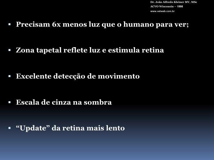 Dr. João Alfredo Kleiner MV, MSc<br />ACVO Wisconsin – 1998<br />www.vetweb.com.br<br />Precisam 6x menos luz que o humano...