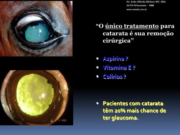 Outras<br />Dr. João Alfredo Kleiner MV, MSc<br />ACVO Wisconsin – 1998<br />www.vetweb.com.br<br />Elétrica<br />Reduplic...