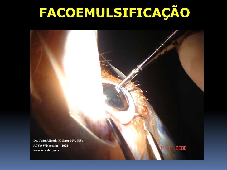 Dr. João Alfredo Kleiner MV, MSc<br />ACVO Wisconsin – 1998<br />www.vetweb.com.br<br />INTRACAPSULAR<br />Risco:<br />Lux...