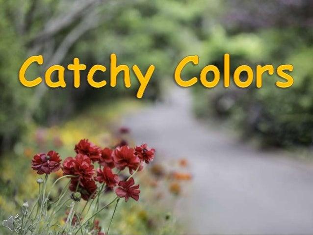Catchy colors (v.m.)