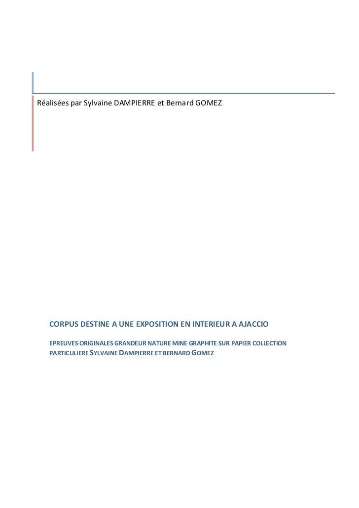 Réalisées par Sylvaine DAMPIERRE et Bernard GOMEZ   CORPUS DESTINE A UNE EXPOSITION EN INTERIEUR A AJACCIO   EPREUVES ORIG...