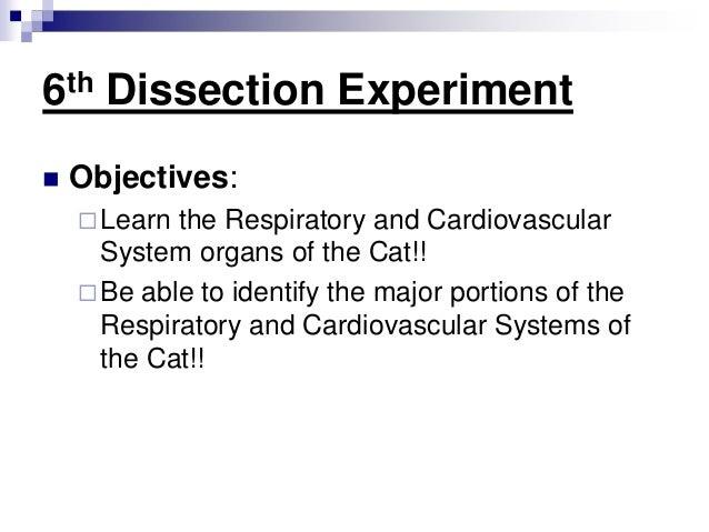 Bio 141 lab notes