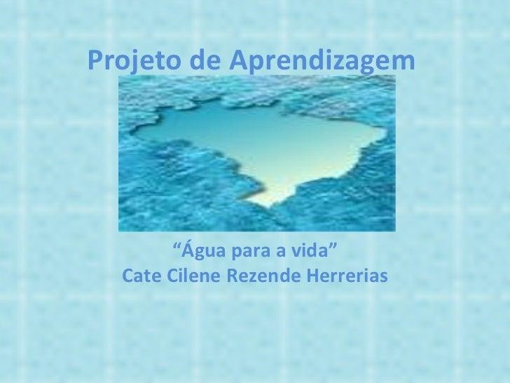 """´ """" Água para a vida"""" Cate Cilene Rezende Herrerias Projeto de Aprendizagem"""
