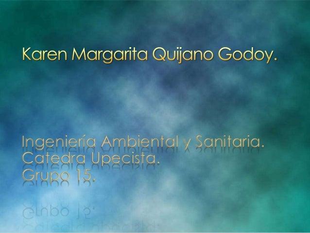 Ingeniería Ambiental y Sanitaria.  Catedra Upecista.  Grupo 15.