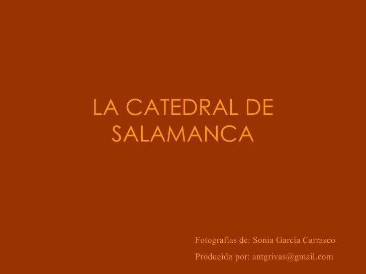 LA CATEDRAL DE SALAMANCA Fotografías de: Sonia García Carrasco Producido por: antgrivas@gmail.com