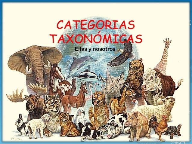 CATEGORIAS TAXONÓMICAS Ellas y nosotros
