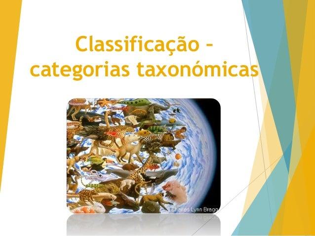 Classificação –  categorias taxonómicas