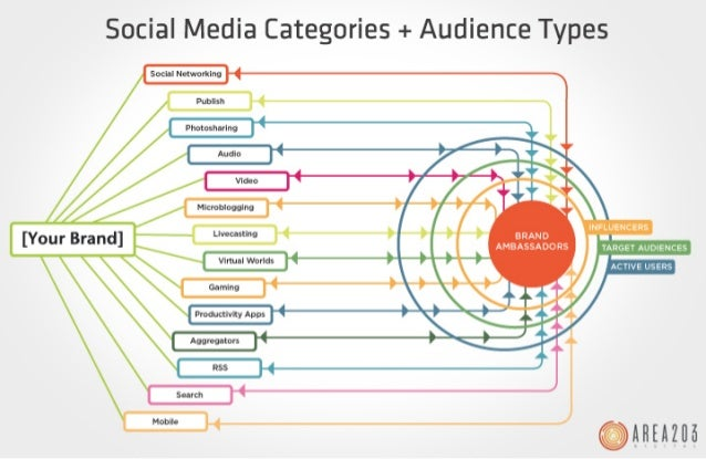 The Social Media Footprint: Social Media Categories and Audience Types
