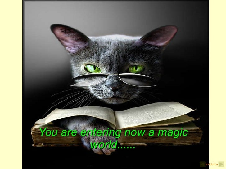 You are entering now a magic world...... Nidokidos