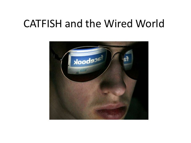 CATFISH and the Wired World