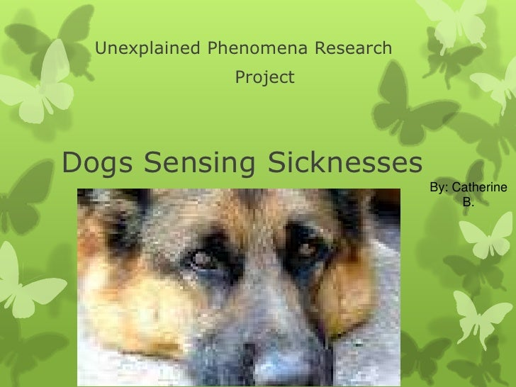 Unexplained Phenomena Research                ProjectDogs Sensing Sicknesses                                   By: Catheri...