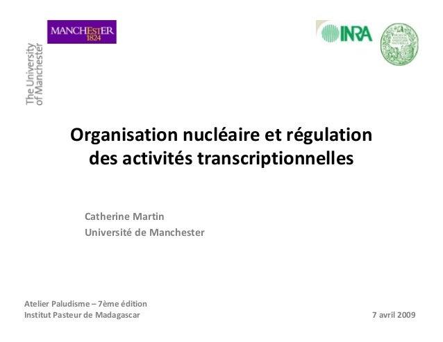Organisation nucléaire et régulationdes activités transcriptionnellesCatherine MartinUniversité de ManchesterAtelier Palud...