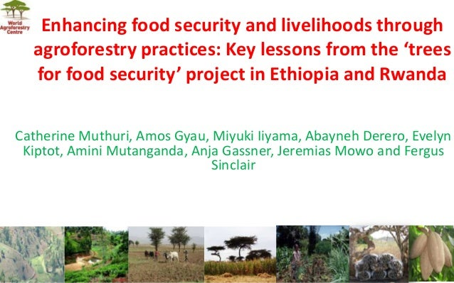 Enhancing food security and livelihoods through agroforestry practices: Key lessons from the 'trees for food security' pro...