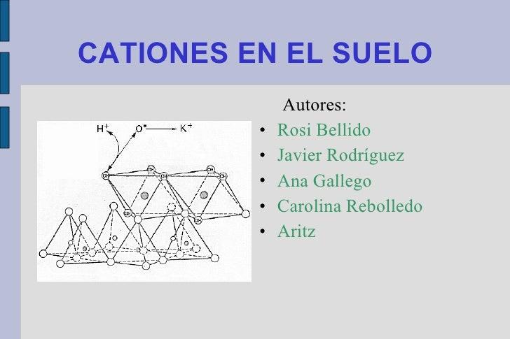 CATIONES EN EL SUELO <ul><li>Autores: </li></ul><ul><li>Rosi Bellido </li></ul><ul><li>Javier Rodríguez  </li></ul><ul><li...