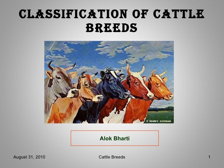 Catlle breeds agb
