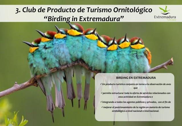 """© DINAMIZA Asesores 3. Club de Producto de Turismo Ornitológico """"Birding in Extremadura"""" BIRDING EN EXTREMADURA Un produc..."""