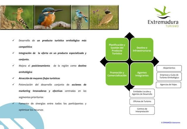 © DINAMIZA Asesores  Desarrollo de un producto turístico ornitológico más competitivo  Integración de la oferta en un pr...