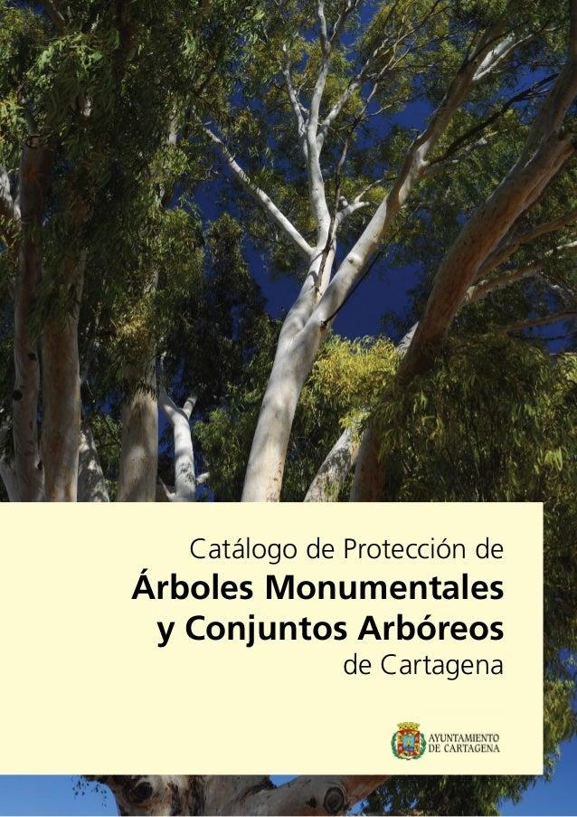 Catálogo de Protección de Árboles Monumentales y Conjuntos Arbóreos de Cartagena