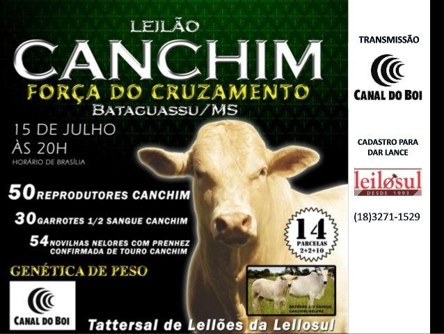 ORGANIZADORES ILMA AGROPECUÁRIA-ANGATUBA/SP Proprietário: Irineu Lopes Machado ESTÂNCIA CANTA GALO - ITAPETININGA/SP Propr...