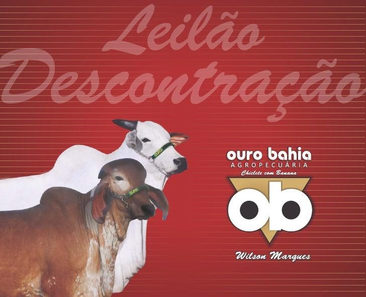 Leilão Descontração Ouro Bahia
