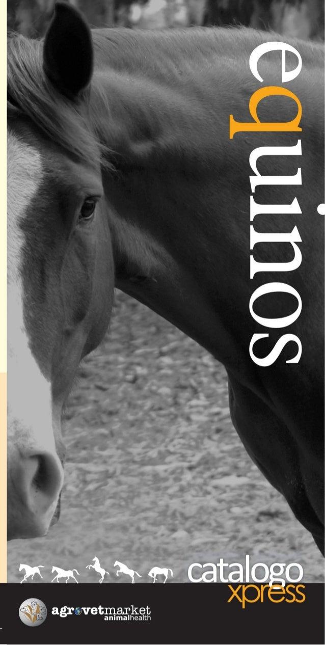 Catálogo xpress - Equinos