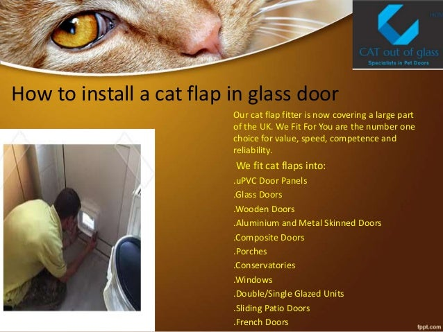 Cat flap in glass for Upvc french doors with cat flap