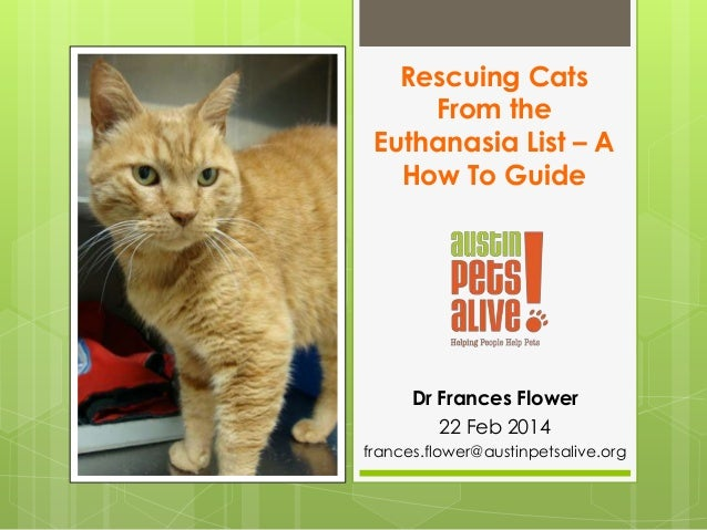 Rescuing Cats From the Euthanasia List – A How To Guide Dr Frances Flower 22 Feb 2014 frances.flower@austinpetsalive.org