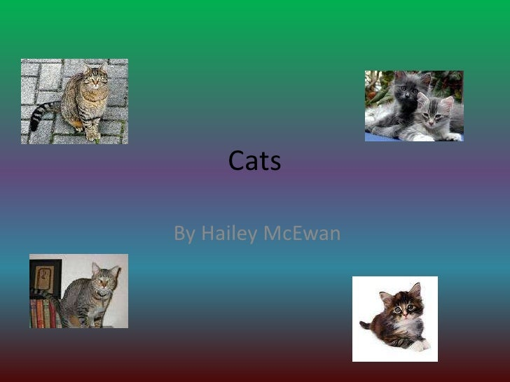 Cats<br /> By Hailey McEwan<br />