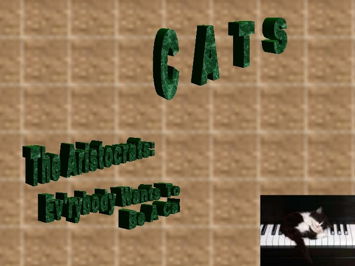 C  A  T  S The Aristocrats: Ev'rybody Wants To  Be A Cat