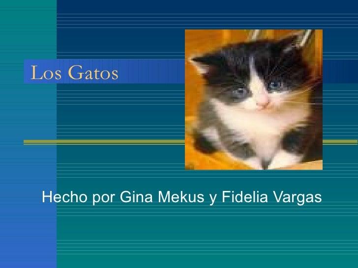 Los Gatos Hecho por Gina Mekus y Fidelia Vargas