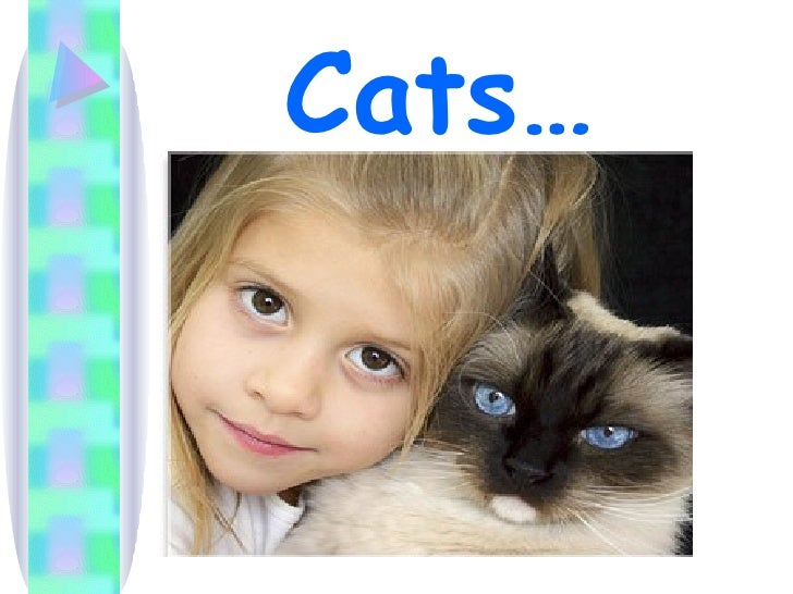 Cats…