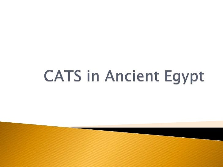 CATS in Ancient Egypt<br />