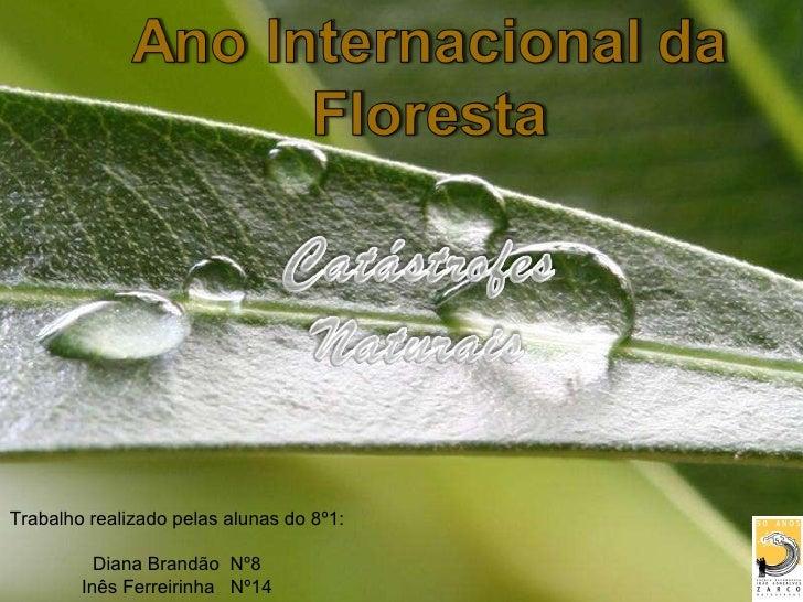 Powerpoint Templates Trabalho realizado pelas alunas do 8º1: Diana Brandão  Nº8 Inês Ferreirinha  Nº14